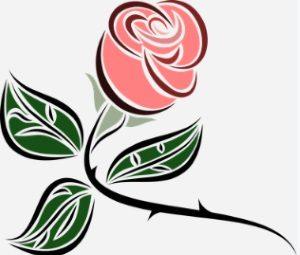 paint rose